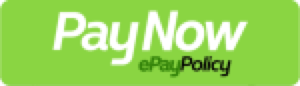 Pay Invoice Button